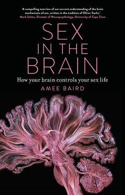 Sex in the Brain