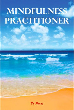 Mindfulness Practitioner