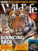 BBC Wildlife (UK) - 12 Month Subscription