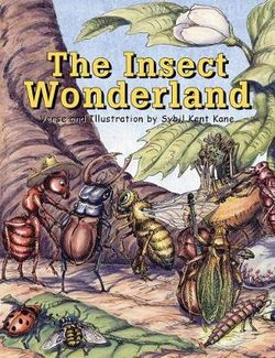 The Insect Wonderland