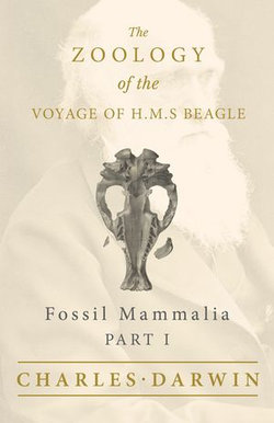 Fossil Mammalia - Part I - The Zoology of the Voyage of H.M.S Beagle