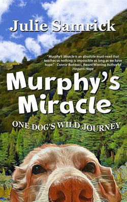 Murphy's Miracle