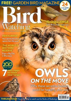 Bird Watching (UK) - 12 Month Subscription