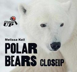Polar Bears CloseUp