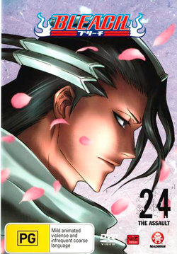 Bleach: Volume 24