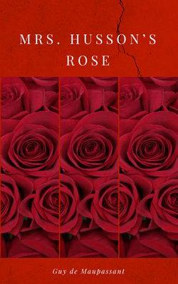Mrs. Husson's Rose