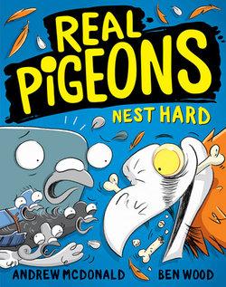 Real Pigeons : Nest Hard