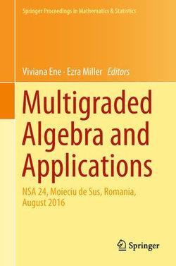 Multigraded Algebra and Applications