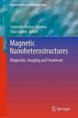 Magnetic Nanoheterostructures
