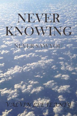 Never Knowing: Never Saw You
