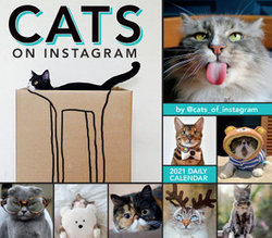 2021 Cats on Instagram Boxed Daily Calendar