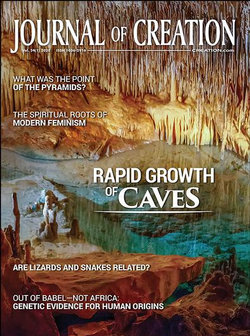 Journal Of Creation - 12 Month Subscription