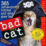 Bad Cat Page-A-Day Desk Calendar 2019