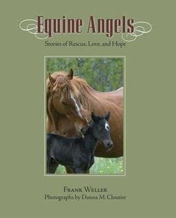 Equine Angels