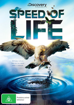 Speed Of Life (Discovery Channel)
