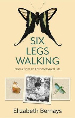 Six Legs Walking