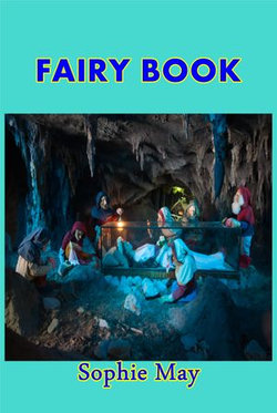 Fairy Book