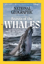 National Geographic - 12 Month Subscription