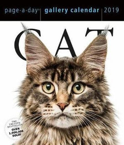 Cat Page-A-Day Gallery Desk Calendar 2019