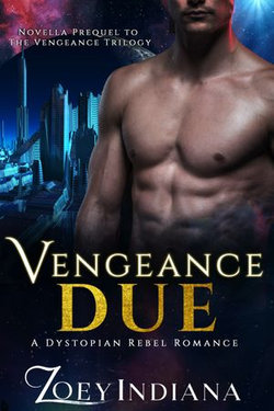 Vengeance Due - A Dystopian Rebel Romance