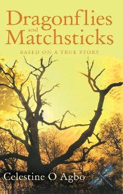 Dragonflies and Matchsticks