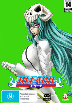 Bleach: Collection 14 (Eps 194-205)