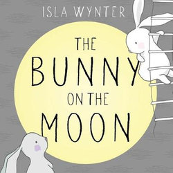 The Bunny on the Moon