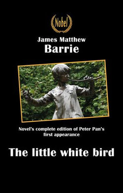 The little white bird or the first appearance of Peter Pan