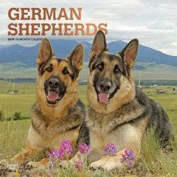 German Shepherds 2019 Square Wall Calendar