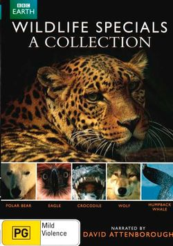 Wildlife Specials: A Collection (Polar Bear / Eagle / Crocodile / Wolf / Humpback Whale) (David Attenborough)