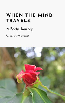 When the Mind Travels: A Poetic Journey