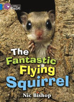 The Fantastic Flying Squirrel Workbook