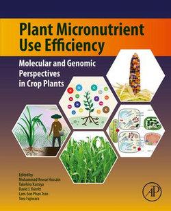 Plant Micronutrient Use Efficiency