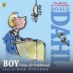 Boy Roald Dahl Book