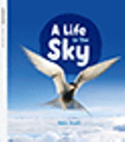 Oxford Literacy Independent A Life in the Sky Pack of 6