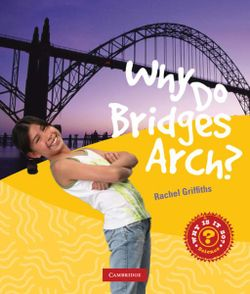 Why Do Bridges Arch?