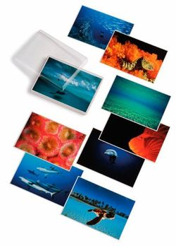 Water Light Time Postcards