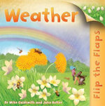 Flip the Flaps: Weather