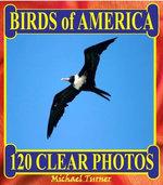 Birds of America. 120 Clear Photos.