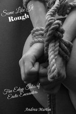Some Like It Rough: Five Edgy Tales of Erotic Encounters