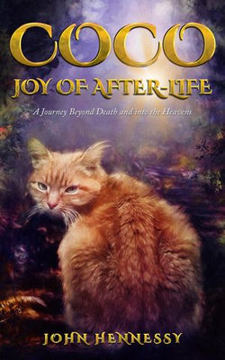Coco: Joy of After-Life (A Journey Beyond Death and into the Heavens)