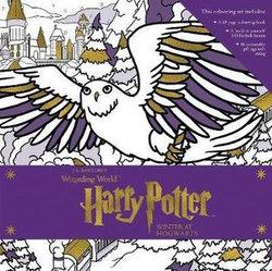 Harry Potter: Winter at Hogwarts