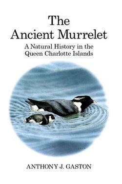 The Ancient Murrelet