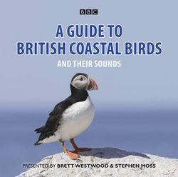 A Guide To British Coastal Birds