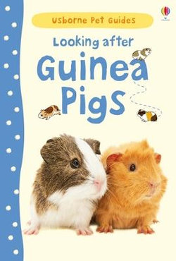 Looking After Guinea Pigs