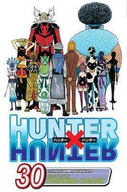 Hunter x Hunter, Vol. 30