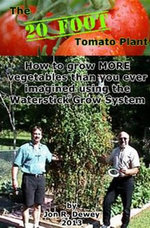 The 20 Foot Tomato Plant