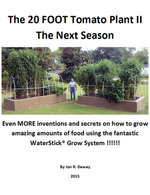 The 20 Foot Tomato Plant II The Next Season