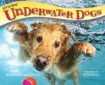 Underwater Dogs 2019 Day-to-Day Calendar