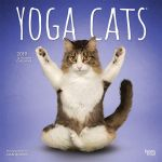 Yoga Cats 2019 Square Wall Calendar